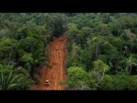 John Minns - Schutz der Amazonas-Regenwald von Ecuador