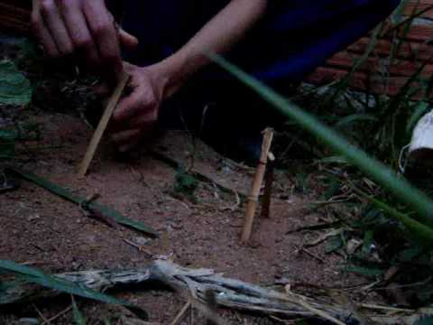 snare trap armadilha do laço