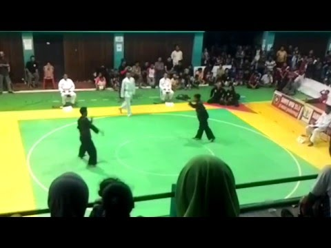 gratis download video - Pencak-Silat-PSHT-VS-Harimau-Terbang--Bupati-Cup-Kotim-2015