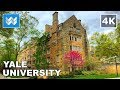 Waing around Yale University in New Haven, Connecticut 【4K】