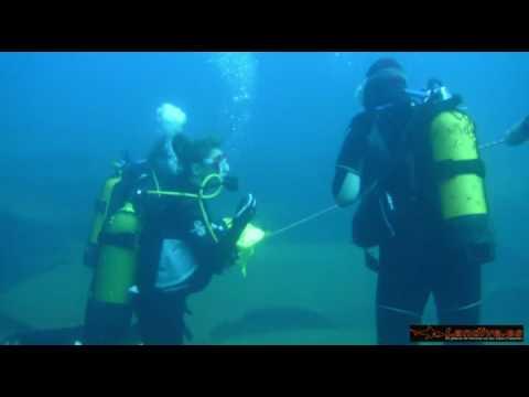 L A N D I V E . E S - Scuba Submarinismo Angela pando ex Solares HD