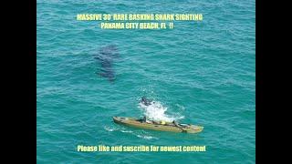 Basking Shark PCB FL