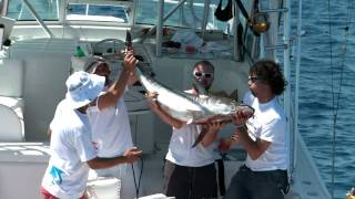 Komiza Croatia  city pictures gallery : Big game fishing Komiza Croatia 2011 HD