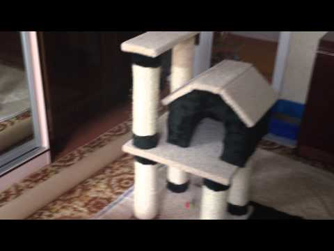 Домик для кошки и когтеточка своими руками
