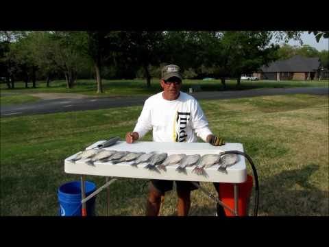 Topwater Bass fishing chug Bug