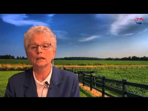 Video: Ann Corcoran on Refugee Resettlement