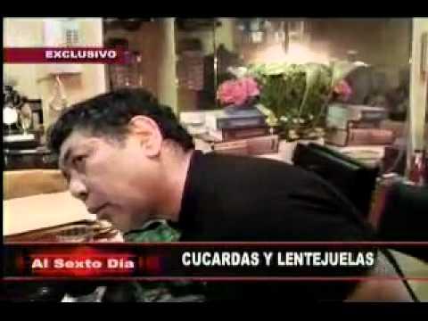 CUCARDAS -