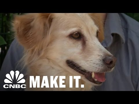 EJ: Would You Give Your Dog Weed If It Would Help Their Medical Condition?