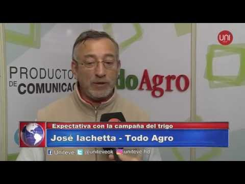 Expectativa con la campaña del trigo - José Iachetta