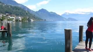 Weggis Switzerland  City new picture : Forró Vem-Vem Weggis Switzerland Video 1