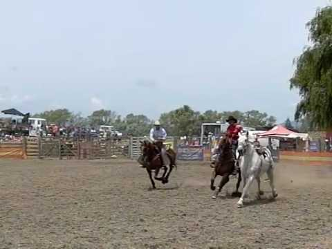 rodeo, Opotiki, New zealand, horse riding