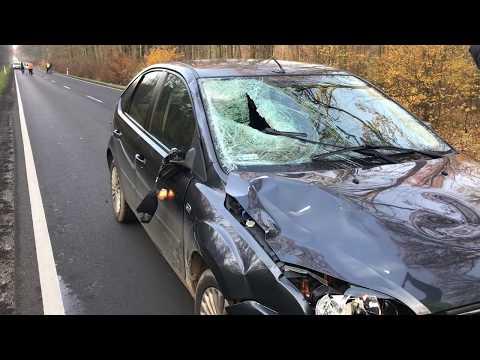 Wideo1: Śmiertelne potrącenie  na drodze Leszno - Kąkolewo