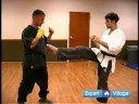 How to Become a Mixed Martial Artist : How to Do a Front Kick in Mixed Martial Arts Training