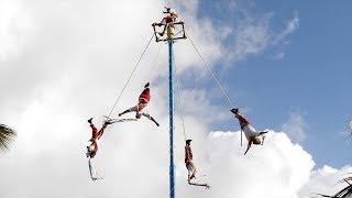 Playa Del Carmen Mexico  City pictures : Top Things to See in Playa del Carmen, Mexico
