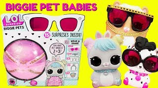 Video LOL Surprise Biggie Pets Pet Babies Or Food Babies? Dollmation, Hop Hop, MC Hammy MP3, 3GP, MP4, WEBM, AVI, FLV Agustus 2018