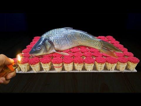 प्रयोग मैच बनाम मछली