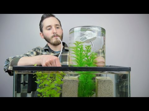 Make A Vacuum Suspended Fish Tank