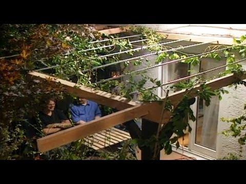 Sichtschutz im Garten mit Rankpflanzen   ToolTown Garten Tipp