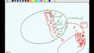 Mod-02 Lec-12 Minors, Topological Minors And More On K- Linkedness