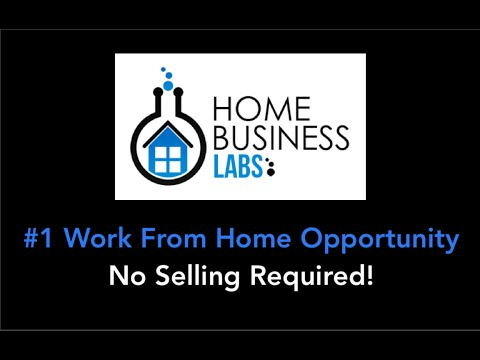 Home Business Labs 2015 | Home Business Labs Review 2015