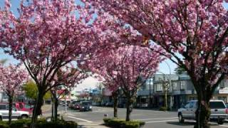 Campbell River (BC) Canada  city photo : Campbell River... my home