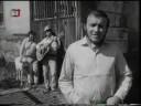 Greenhorns - Divnej smích