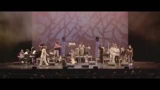 La ruta de las almas Band en Miami