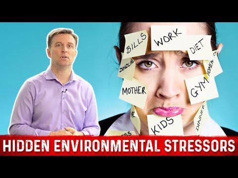 Hidden Environmental Stressors