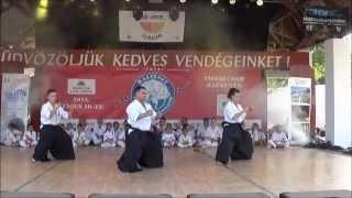 Tiszafured Hungary  city photo : Szanyi Dojo Kyokushin Karate Klub Tiszafüred, Hungary 2015.