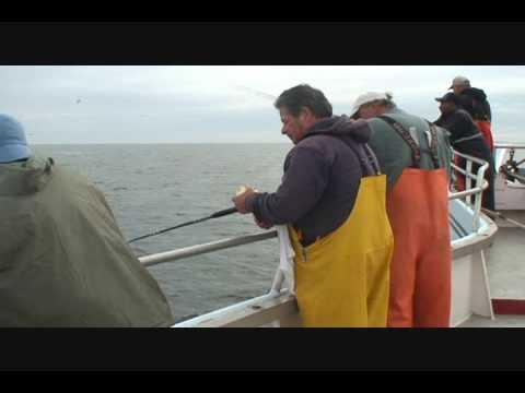 Brooklyn Blue Fish Blitz: Day 5 (видео)