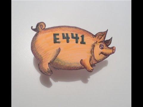 انت تاكل الخنزير منذ طفولتك دون ان تعلم