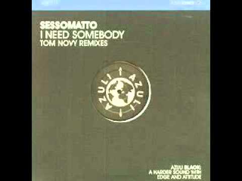 I Need Somebody (Tom Novy's vocal remix)
