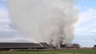 Kalveren omgekomen bij zeer grote brand Lemmer