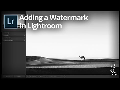 How to Add a Watermark in Lightroom Classic