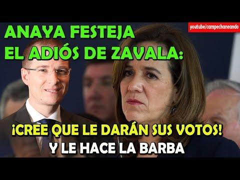 Ricardo Anaya LE HACE LA BARBA a Margarita Zavala - Campechaneando
