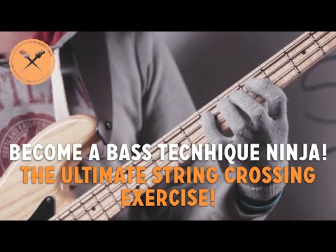 bass - Check out the full