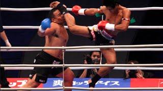 Muay Thai Champion vs. Taekwondo Champion