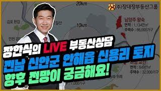 [부동산투자상담/부동산방송] 전남 신안군 안해읍 신용리 토지 향후 전망이 궁금해요!