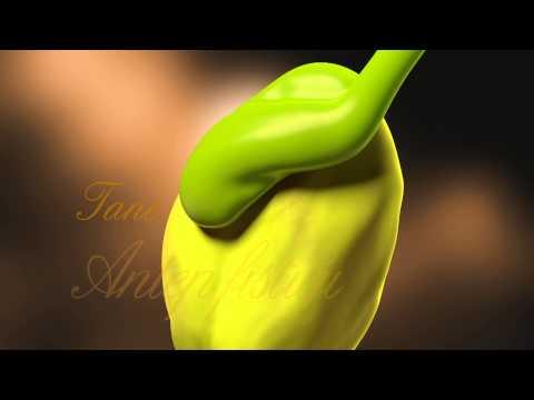 Torku - Çiftçi Sütü Reklam Filmi