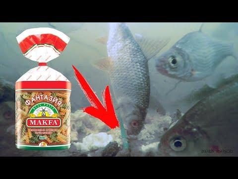Как рыба реагирует на макароны