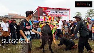 KUDA SILAT MOGOK MELAKUKAN ATRAKSI - Horse Silat Strike Attraction