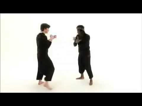 Pencak Silat-Hand and Footwork by Tony Felix & Jason Kelly