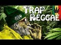 Download Lagu Best Trap Reggae Mix 2018 💊 Best Trap, Bass & EDM Reggae Music 💊 Happy 420 Mp3 Free