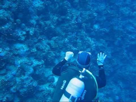 Diving In Sharm El Sheikh, Egypt