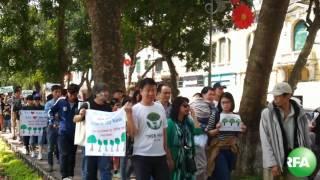 Người Hà Nội tiếp tục tuần hành phản đối chặt cây