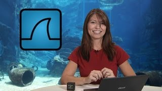 Video HakTip - How to Capture Packets with Wireshark - Getting Started MP3, 3GP, MP4, WEBM, AVI, FLV September 2018