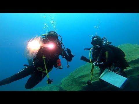 H θαλάσσια βιοποικιλότητα σε κίνδυνο: Αιτίες και προοπτικές…