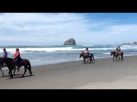 Green Acres Beach and Trail Rides, Pacific City Oregon, Lincoln City Oregon, Pacific City Oregon,