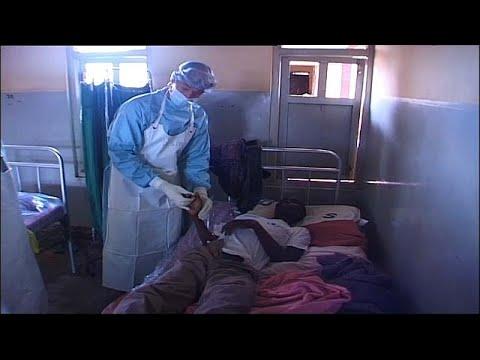 Ebolafieber: Jetzt auch kongolesische Großstadt bet ...