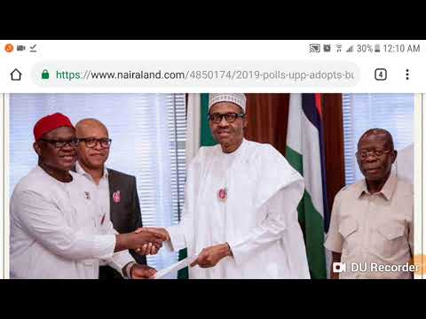 IGBO GROUP SUPPORTS BUHARI | 4 DIDVISIONS OF IGBOs IN 2019 ELECTION